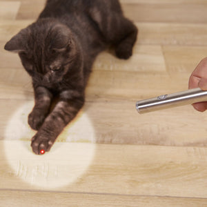 2 in 1 Red Laser Point Cat Toy Pen