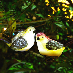 3 Pcs Solar-Powered LED Bird Lights