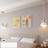 Scandinavian Geometric Pendant Lights, LED Ceiling Lights. Complement your Scandinavian & Nordic Themed Homes/Business with the Scandinavian Geometric Pendant Light. LED Bulbs Compatible. Free Island-wide Delivery - No Minimum Purchase for all BTO, Resale, EC, Condo, Restaurants, Cafes, Hotel & Retail Lighting.