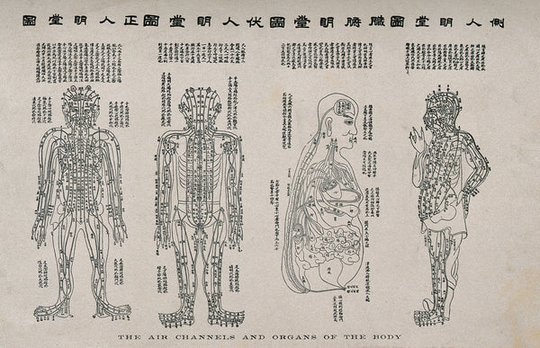 Acupuncture: how it works and its benefits