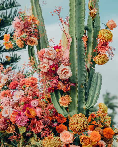 Jill Fausner, floral designer, creative, layered vintage, the qi flower person interview, wellness, tea, beauty