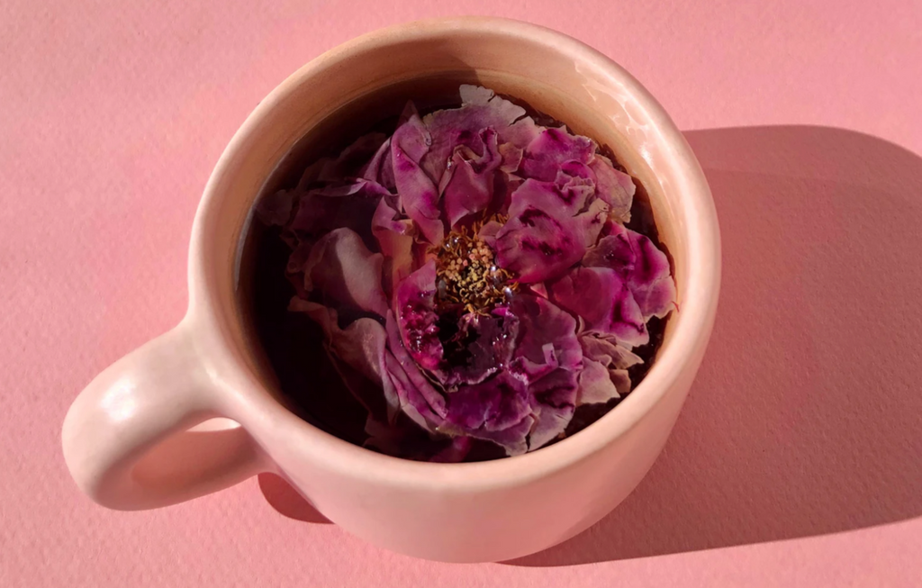 edible rose tea blooming flower wellness