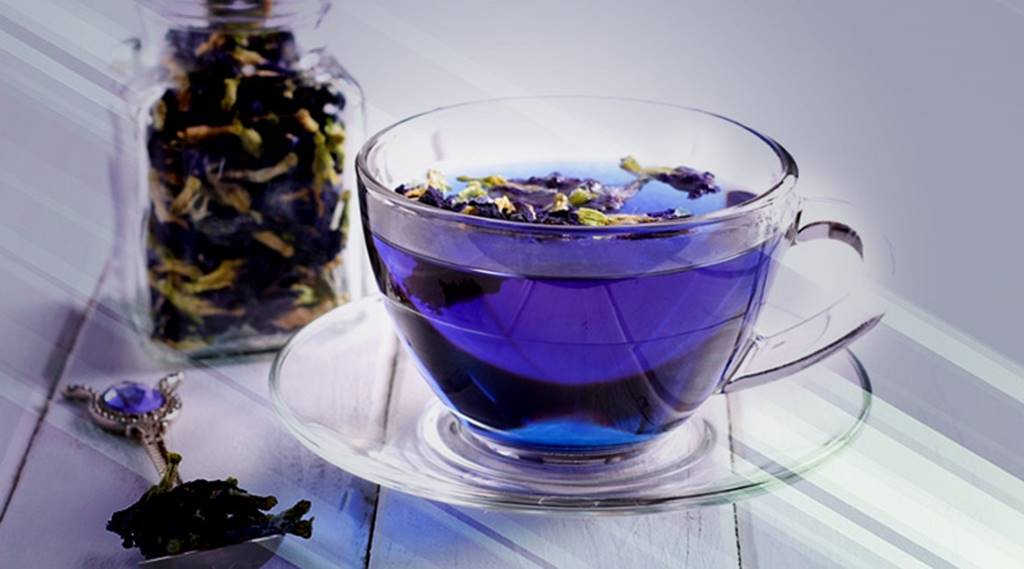 butterfly pea tea picture