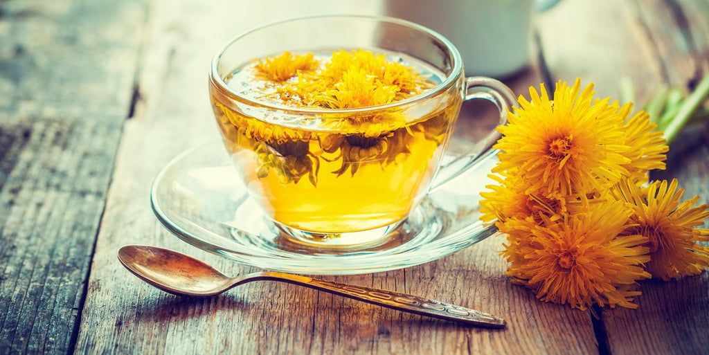 dandelion flower tea wellness herbal