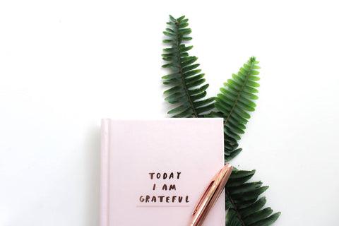 gratitude journal with fern