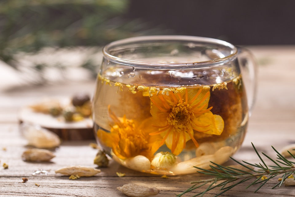jasmine flower tea picture
