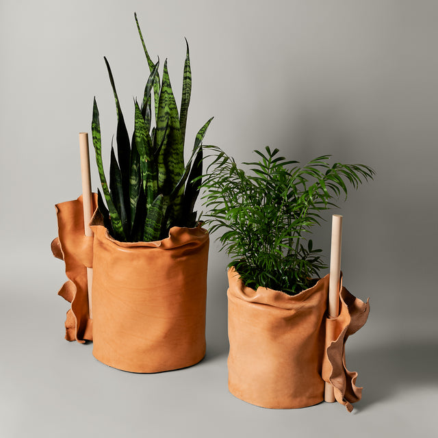 Large and small natural leather planters from Seven Sundays Studios
