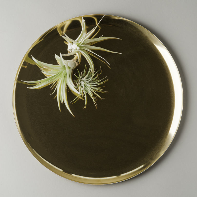 Golden serving tray