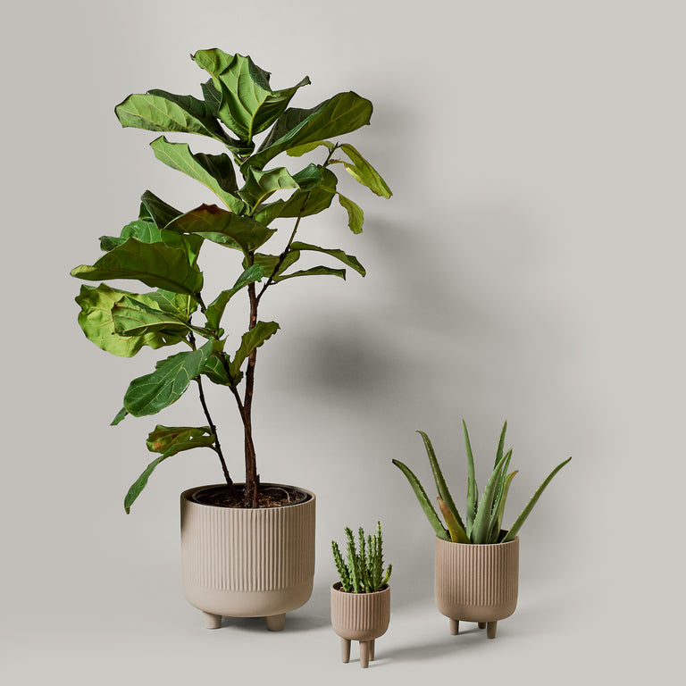 Extra large, small and large grey terracotta planters or bowls from Kristina Dam Studio