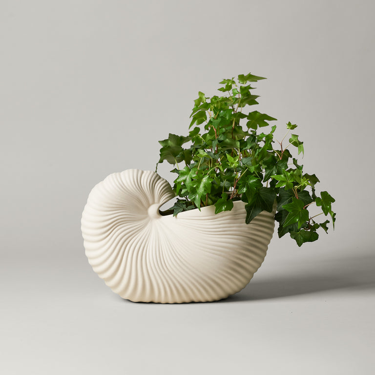 White Shell pot vase from Ferm Living shaped like a nautilus shell