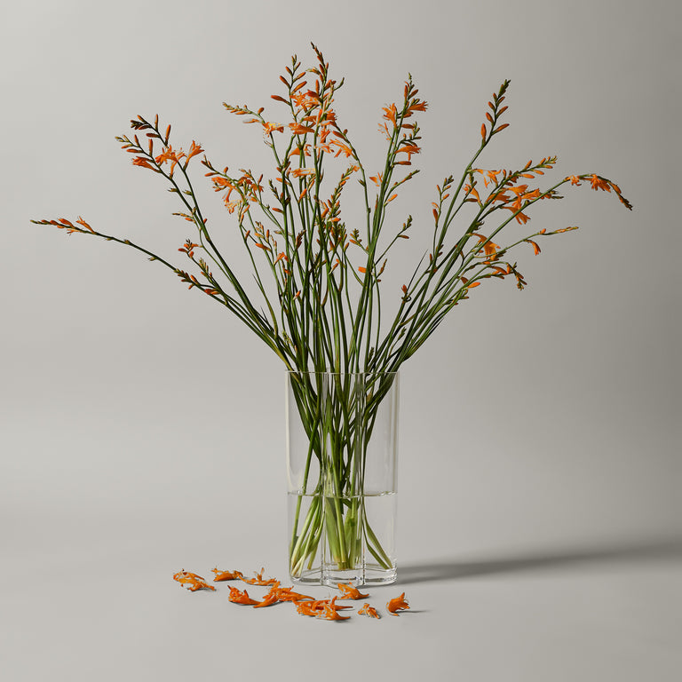 Medium clear glass Window vase from Normann-Copenhagen's Tivoli collection