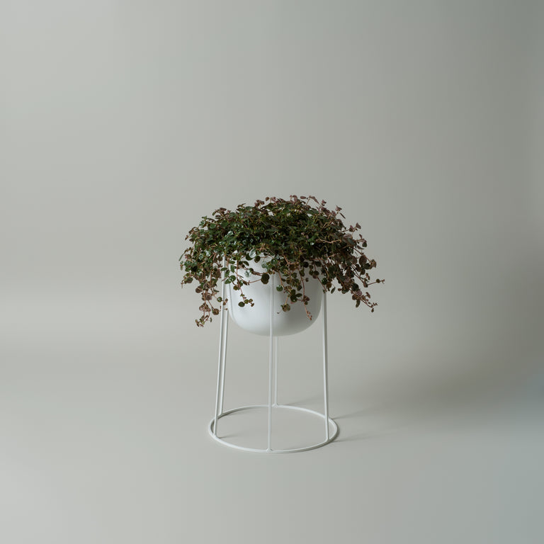 Wire pot, bases and top