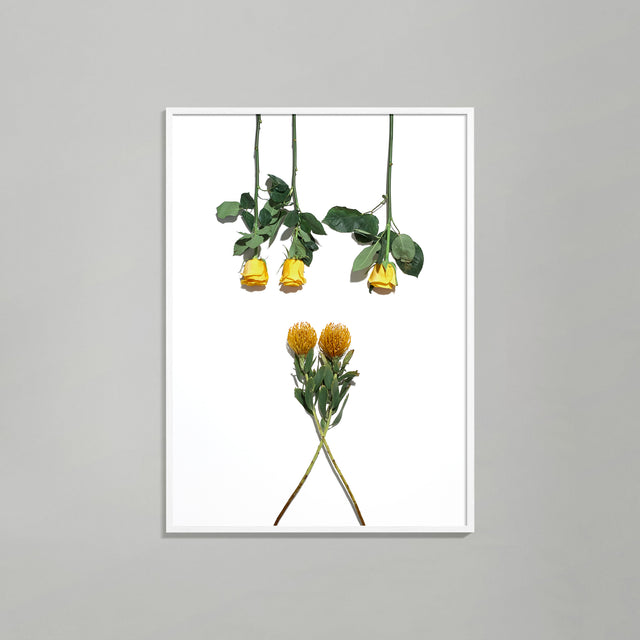 Botanical Geometry 2 print