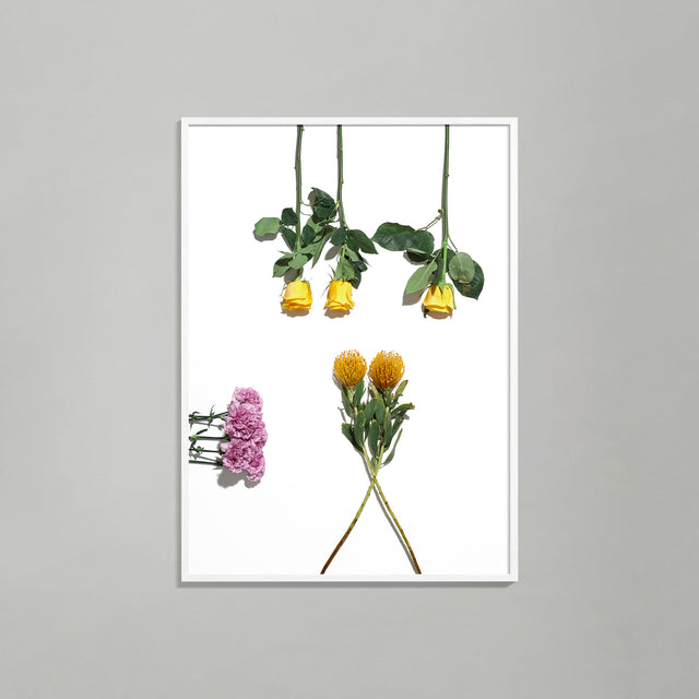 Botanical Geometry 3 print