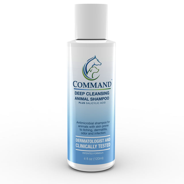 Command™ Shampoo (12ct/case)