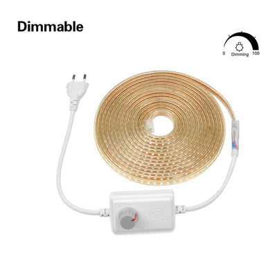 Kitchen Outdoor Garden Lamp Tape with EU Plug