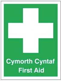 English and Welsh 'First Aid' and 'Cymorth Cyntaf' Sign SSW0184