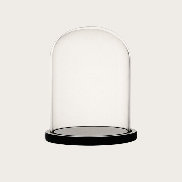 Dominic Small Glass Dome with Black Base