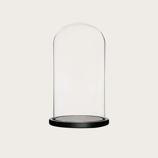 Dominic Large Glass Dome with Black Base