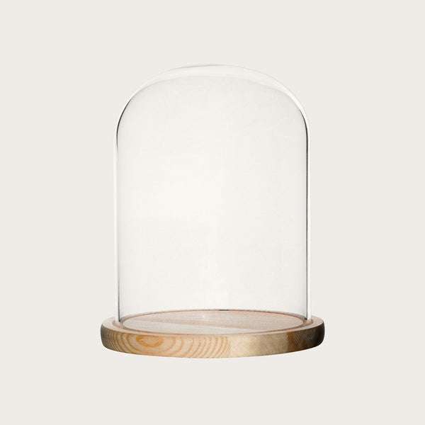 Dominic Small Glass Dome with Wood Base