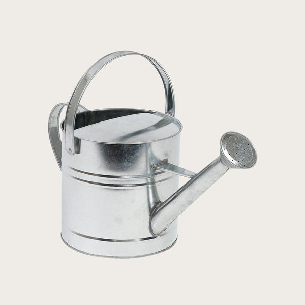 Buckley Galvanized Watering Can