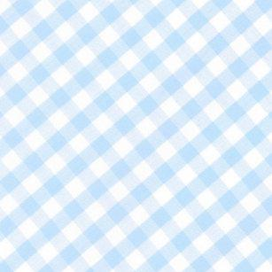 Light Blue Gingham Paper Napkins