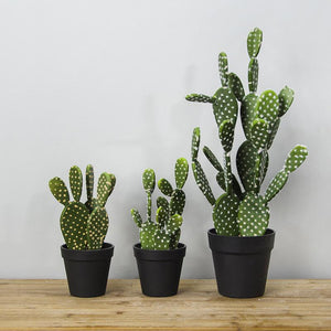 Faux Funky Cactus