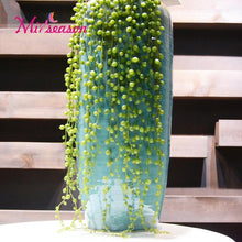 Faux String Of Pearls Succulents