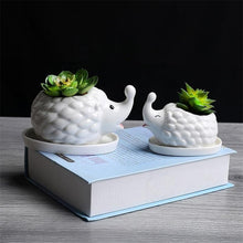 White Ceramic Hedgehog Succulent Pots