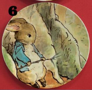 The Tale of Peter Rabbit Illustrated Plate