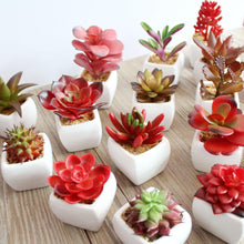 Faux Red Succulents in Ceramic Pots