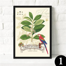 Beautiful Birds Canvas Poster