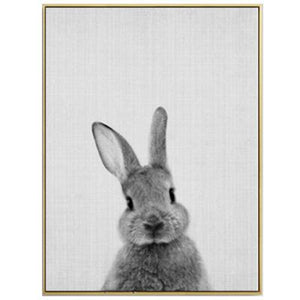 Rabbit Tail Canvas Painting
