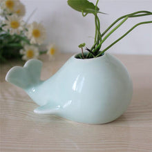 Lovely Whale Ceramic Flowerpot