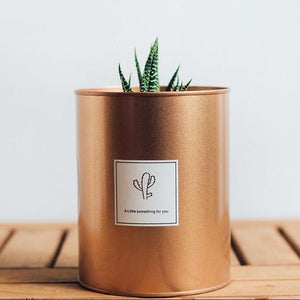 Tin Can Planter Flower Pot