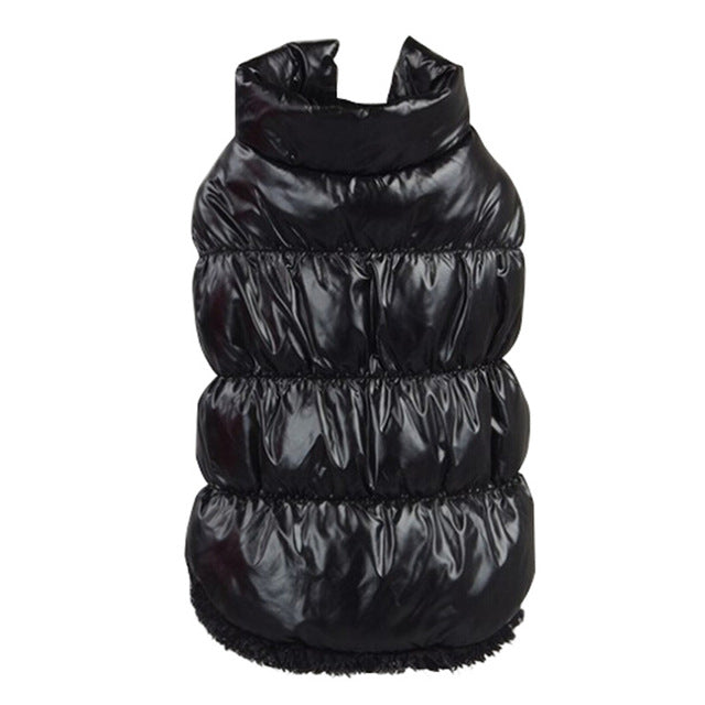 Padded Winter Jacket