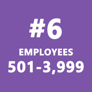 New York Harassment Package #6 (501-3,999 Employees) - myCEcourse