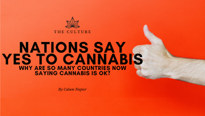 Why are so many countries now saying cannabis is OK?