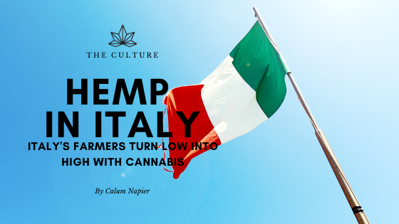 'It saved our business': Italy's farmers turn low into high with cannabis