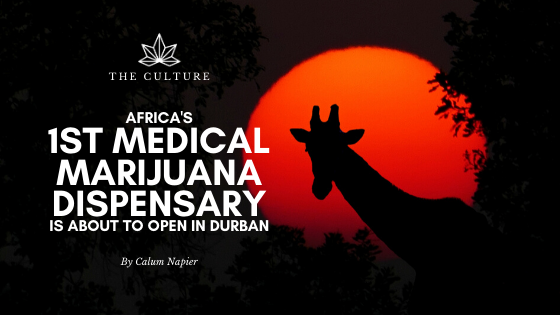 Africa's First Medical Marijuana Dispensary is About to Open in Durban