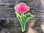 Electric Pink Poppy Patch