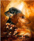 DIY Diamond Painting - Dachshunds(round) - The Dome Inc