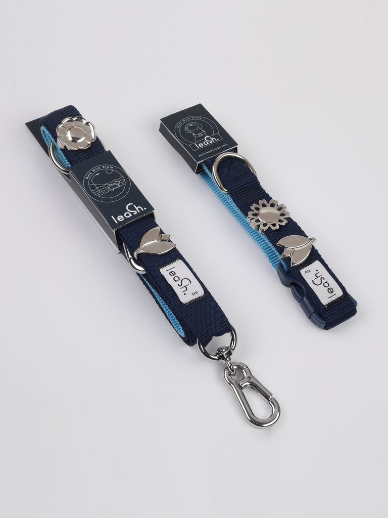 collar + leash - SPECIAL PRICE