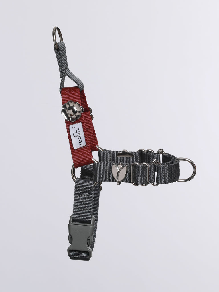 Gray & merlot harness + leash