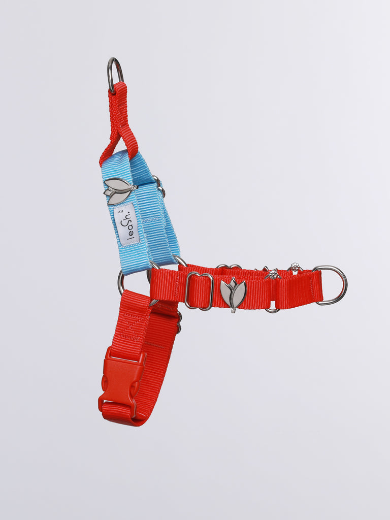 Red & sky harness + leash
