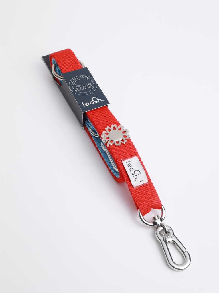 Red & sky leash