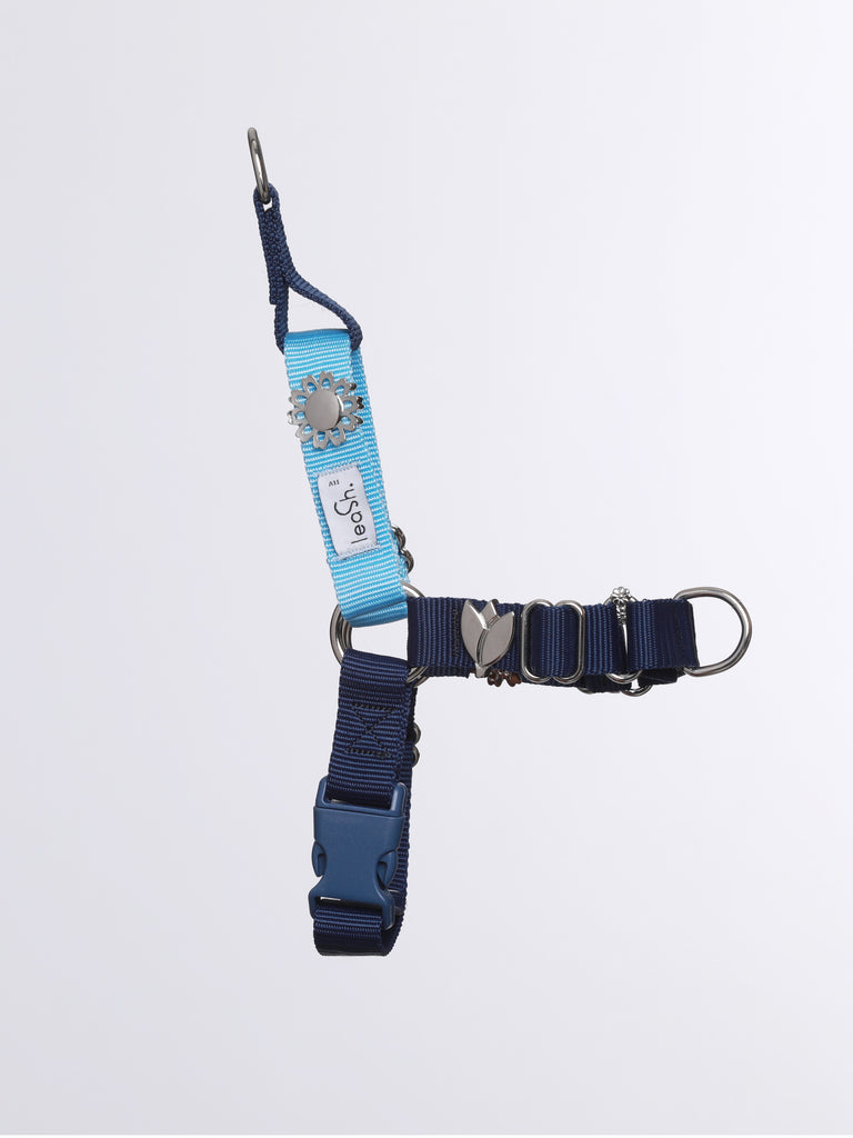 Sky & Ocean harness + leash