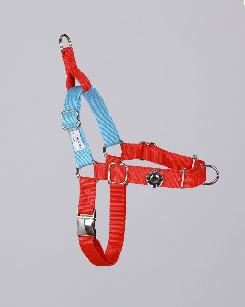 Red & sky SILVER harness