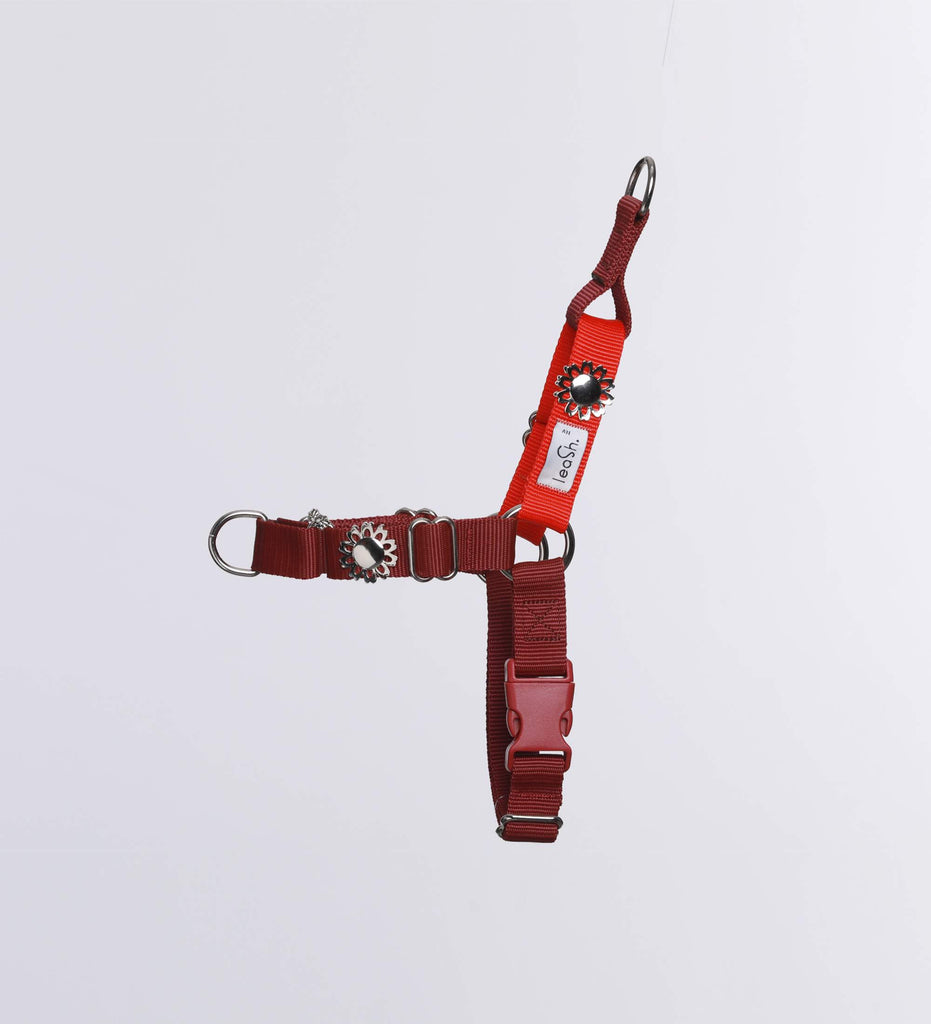 Red & Merlot harness