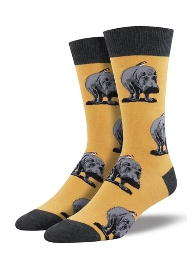 Men's Hip Hipporay Socks - Yellow